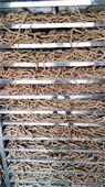 中药材烘干机价格,板蓝根烘干设备厂家