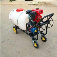 汽油大马力喷雾器 农用消毒防疫喷药机
