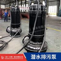 电厂用WQ潜水排污泵