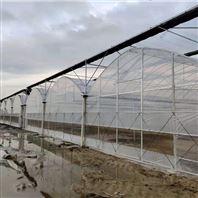 城市种植 大型水培温室 瓜果蔬菜农业大棚