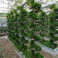 水培温室 立体种植 无土栽培 螺旋仿生柱