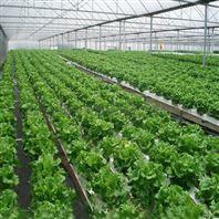 温室无土栽培 平铺式PVC管道 水培设施